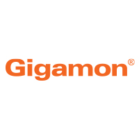 Forrester Study: The Total Economic Impact of Gigamon